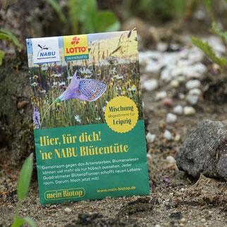 Der NABU Leipzig hat eine auf Leipzig abgestimmte Samenmischung zusammengestellt. Die darin enthaltenen Pflanzen sind wertvoll für die Insektenvielfalt. Die Tütchen sind beim NABU Leipzig erhältlich. Foto: NABU Leipzig