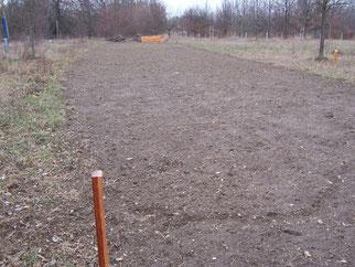 Die Fläche wurde bereits im Herbst vorbereitet, demnächst wird hier eine Blühmischung ausgesät, sodass eine Schmetterlingswiese entsteht.