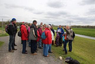 Bei einem Zwischenstopp auf dem Deich der Neuen Luppe wurden die Unterschiede von Hart- und Weichholzaue und die ökologischen Zusammenhänge in der Leipziger Auenlandschaft vorgestellt.