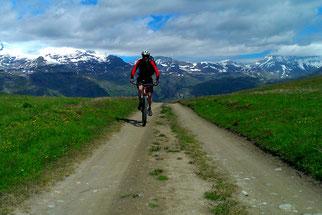 Westalpen Cross, mtb-Tour, Ligurische Grenzkammstraße, Schweiz, Frankreich, Italien, Mountainbike