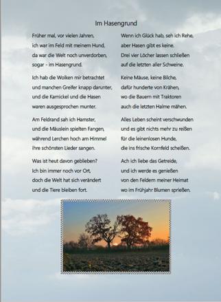 Gedicht über die natur im Hasengrund von Gerhard Steil