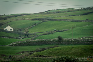 Lanschaft in Irland