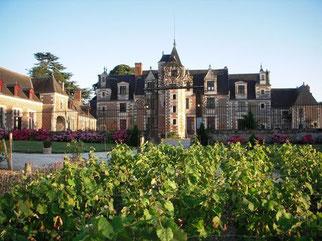 chateau-Jallanges-Vallee-Loire-Touraine-Vouvray-visite-jardins-parc