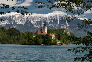 Marienkirche auf einer kleinen Insel des Bleder Sees