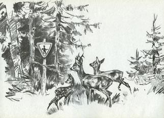 Hannes Liederley: Lustige Jagd; 2. erw. Aufl., Hannover 1964