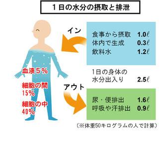 重量物作業での腰痛防止