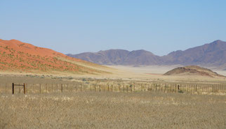 Dornensavanne in Namibia | By Falense (Self-photographed) [GFDL (http://www.gnu.org/copyleft/fdl.html) or CC-BY-SA-3.0 (http://creativecommons.org/licenses/by-sa/3.0/)], via Wikimedia Commons