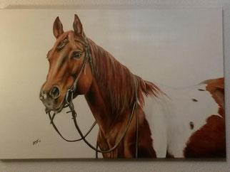 Pferdegemälde an der Wand aufgehängt