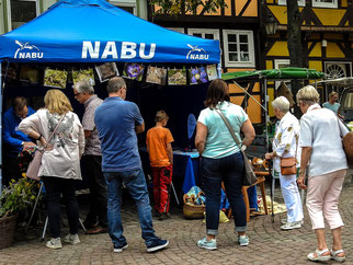 Der Infostand auf dem Kirchplatz war gut besucht. - Foto: Kathy Büscher