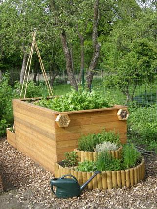Die Küchengarten-Box im Frühling