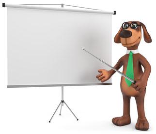 Ausbildung Hundetrainer, Althütte, Rems-Murr-Kreis, Hundeverhaltensberater