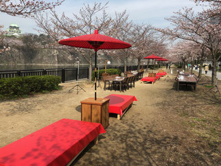 キレイに整備された大阪城公園BBQエリア