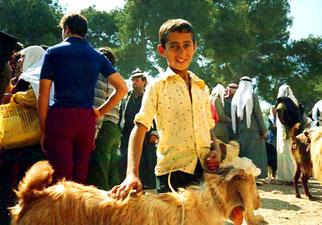 Hassan war stolz auf seinen Ziegenbock