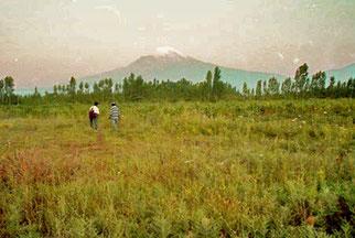 80 km entfernt kommt der Mt. Ararat durch die Wolken