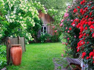 yoga entspannung meditation am land, zeit für mich, landhofmühle, minihof-liebau, burgenland, yoga, seminar