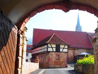 der Blick vom Schloss-Hof hinaus auf Tann