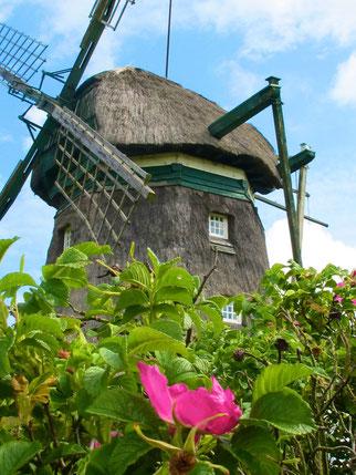 ein Mühle die als Ferienhaus zu mieten war