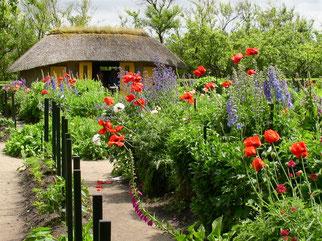 der Garten - von Nolde persönlich  angelegt und gepflegt