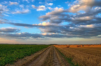 Landwirtschaft Himmel Felder Wolken