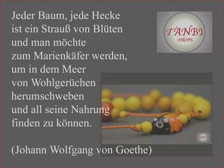 Spruch, Frühling, Johann Wolfgang von Goethe, Marienkäfer, bunt, TANBI-shops,