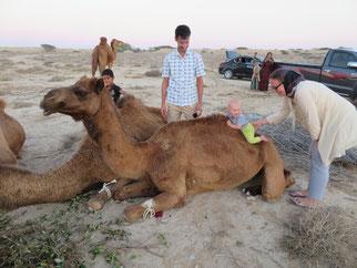 """Johanns erster """"Ritt"""" auf einem Kamel"""