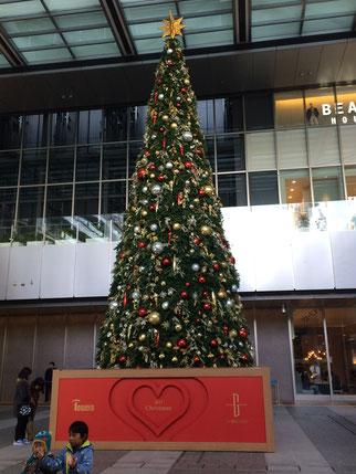 名駅前のクリスマスツリー。