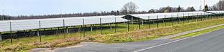 Im Camp Astrid haben sich nicht nur Unternehmen niedergelassen. Auch ein Solarpark wurde gebaut. Die Stadt sucht jetzt verstärkt nach weiteren Interessenten. Foto: D. Müller