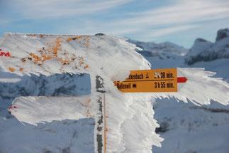 Skitour Brisen Zentralschweiz Engelberger Tal