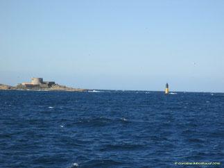 La Jeaume Garde est une cardinale où des plongées sont effectuées sur l'épave LE CIMENTIER.