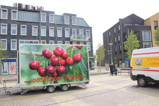 Vathorst amersfoort oosterom kersen aardbeien uit de caravan
