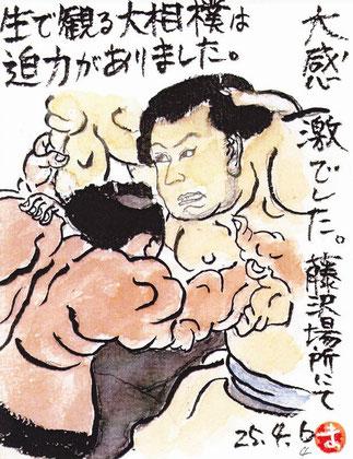 大相撲 藤沢場所