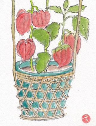 ほうづき市の鉢