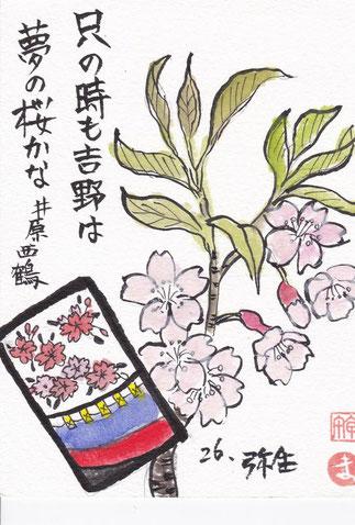 吉野の桜と西鶴