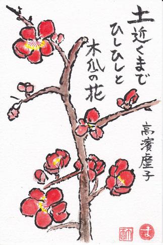 木瓜(ぼけ)の花 高濱虚子
