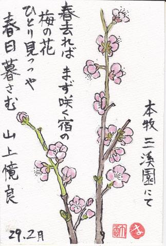 梅の花 山上億良
