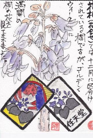 桐の花、花札の桐