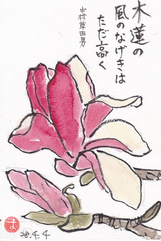 モクレン 中村草田男