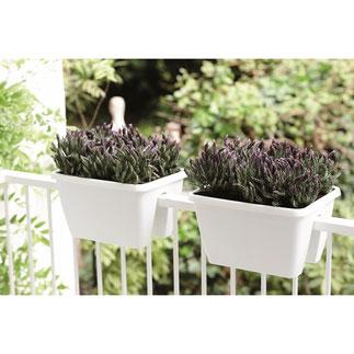 balkonbakken, balkon moestuin,groenten kweken, kruiden kweken, fruit kweken, balkon railing,  balkon ontwerp, moestuin bak, elho, barcelona, flower bridge, plantenbak