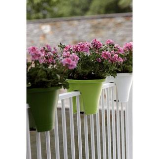 balkonbakken, balkon moestuin,groenten kweken, kruiden kweken, fruit kweken, balkon railing,  balkon ontwerp, moestuin bak, elho, flower bridge corsica