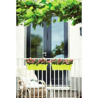 balkonbakken, balkon moestuin,groenten kweken, kruiden kweken, fruit kweken, balkon railing,  balkon ontwerp, moestuin bak, elho, easy hanger, corsica