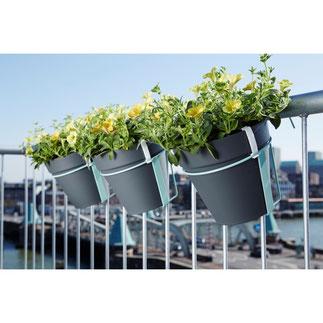 balkonbakken, balkon moestuin,groenten kweken, kruiden kweken, fruit kweken, balkon railing,  balkon ontwerp, moestuin bak, elho, urban loft, plantenhanger