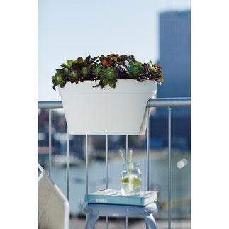 balkonbakken, balkon moestuin,groenten kweken, kruiden kweken, fruit kweken, balkon railing,  balkon ontwerp, moestuin bak, elho, flower bridge urban loft