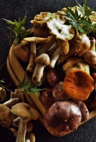 美菜ガルテンふるかわ 特製木曽産天然きのこの味噌辛鍋、この味を知らない??それは、お気の毒様です。