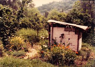 Unser Toilettenhäuschen mit Blumenbeet
