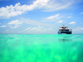 Surf boat trips