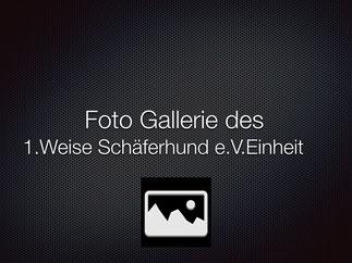 1.WS Einheit Schweinfurt 2013 - Bilder