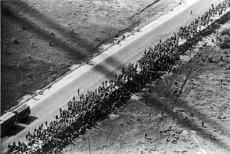 1942-07. Минск. Колонна военнопленных на марше. Вид с самолёта.