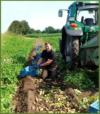 Axel Griem bei der Kartoffelernte