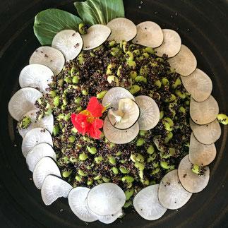 Nourriture saine et saisonnière