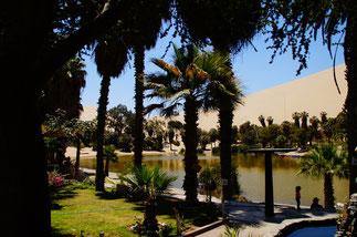 Eine echte Oase in der Wüste: Huacachina